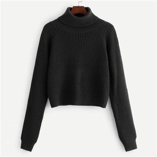 Turtleneck Ribbed Knit Crop Sweater - Black / S - Sweater