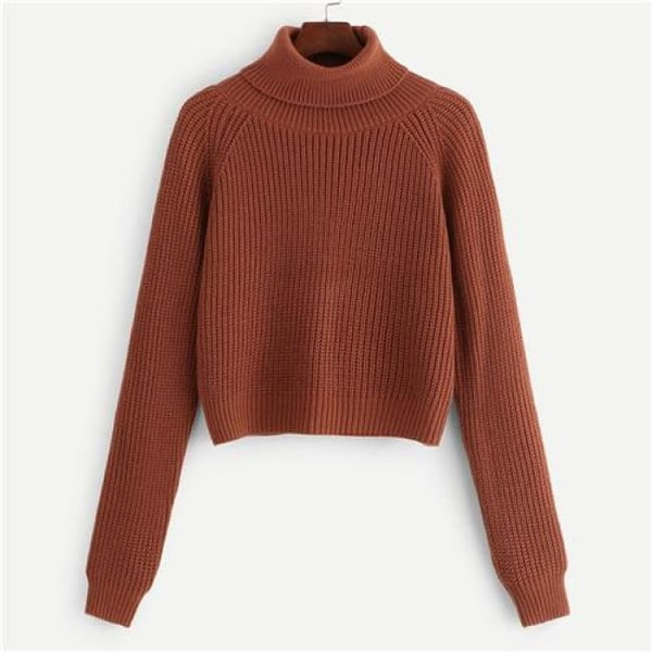 Turtleneck Ribbed Knit Crop Sweater - Coffee / S - Sweater
