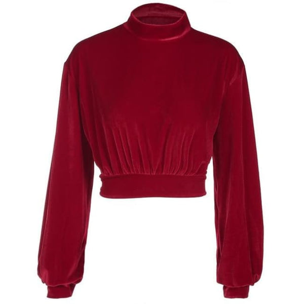 Velvet High Neck Pullover Crop Sweatshirt - Red / L - Crop Sweatshirt