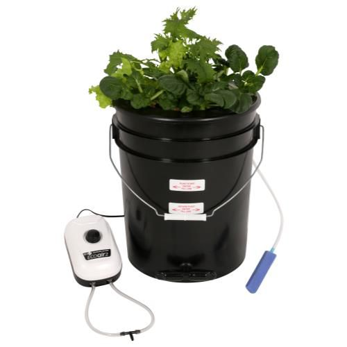 GrowKings-Flo-n-Gro® Gro Momma® Bubbler Bucket