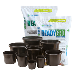 A wide variety of growing mediums and containers available