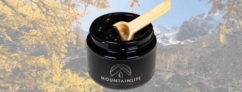Mountainlife Shilajit Resin. What is Shilajit?