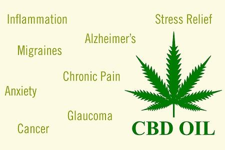 From cosmetics to pet supplements, numerous products contain CBD. Although it's growing popularity, a person still has doubts about CBD working; its benefits and side-effects