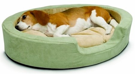 "K&H Manufacturing Snuggly Sleeper Heated Bolster Dog Bed Size: Large (31"" L x 24"" W)"