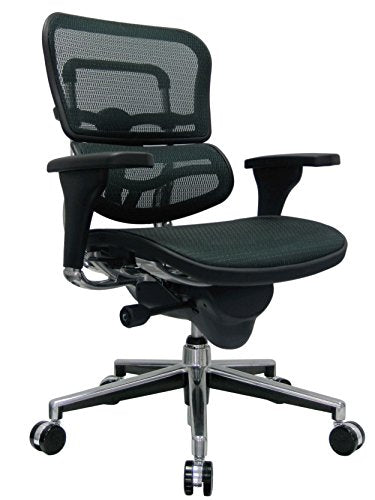 Eurotech Seating Ergohuman Mid Back Mesh Swivel Chair, Green