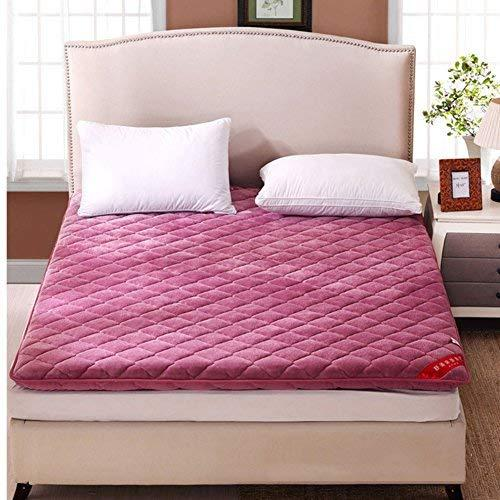 Hxxxy Futon Mattress Topper,Tatami Floor Mat Queen Size Single Size-C 180X200Cm(71X79Inch)