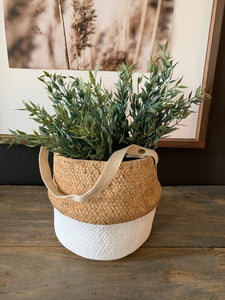 Bag Concrete Planter