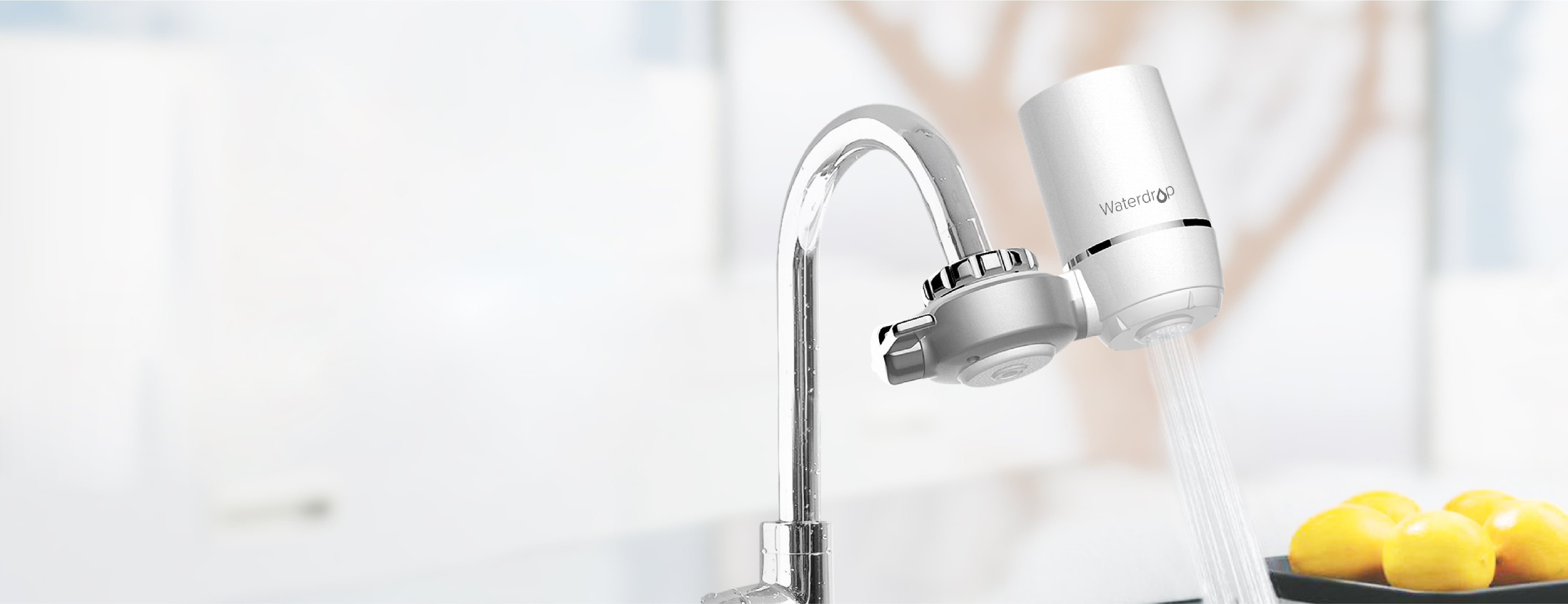 A water faucet filter