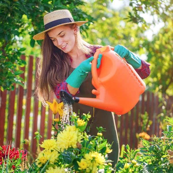 Watering your home garden or plants