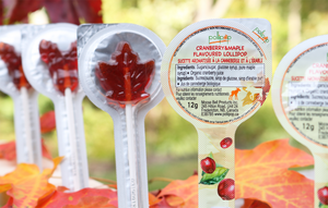 Maple Flavoured Lollipops in Box / Sucettes à saveur d'érable 30X12g