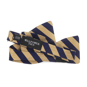 Blue and Gold Forever Bow Tie