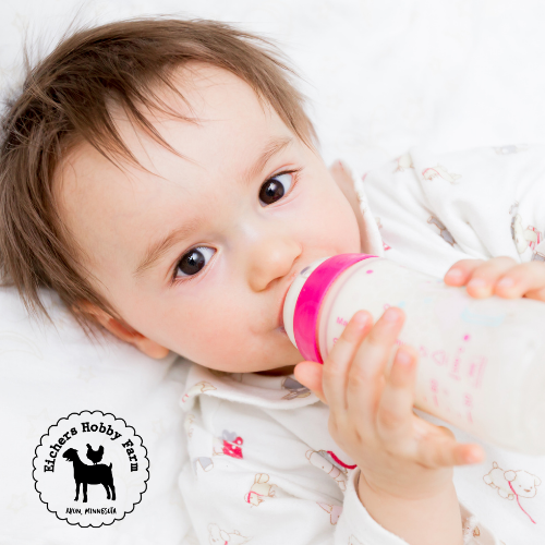 5 Reasons Why Raw Goat's Milk Is Beneficial For Your Baby