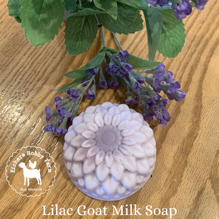 Lilac Handcrafted Goat Milk Soap - eichershobbyfarm - Goat Milk Products - Avon, Minnesota