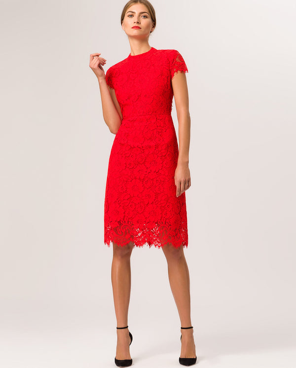 Cocktail Lace Dress