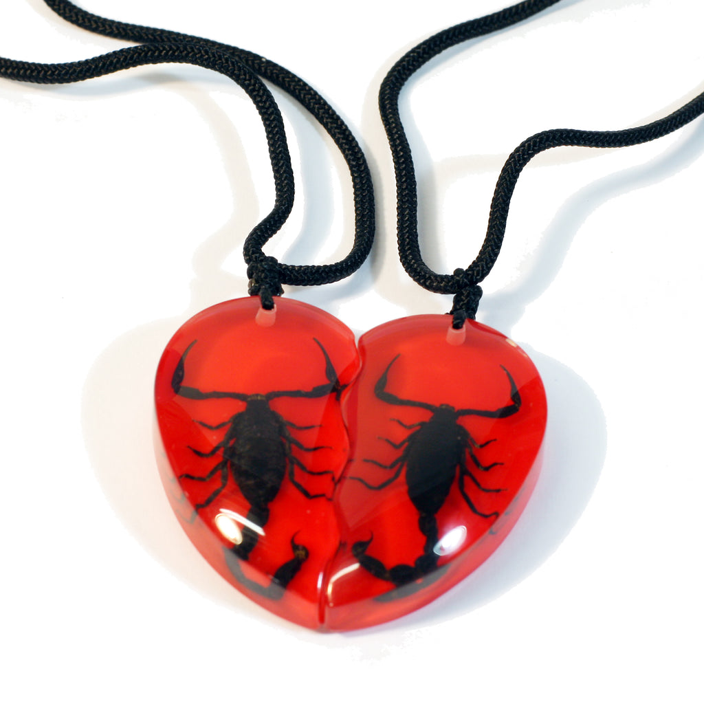 SP2212<br/>Black Scorpion Double Heart Necklace