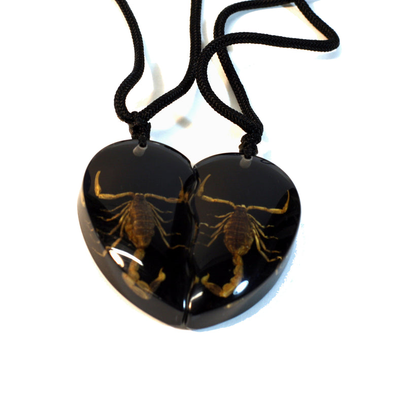 SP2214<br/>Gold Scorpion Double Heart Necklace
