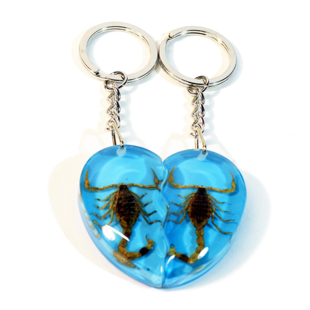 SK2292<br/>Gold Scorpion Double Heart Key Chain