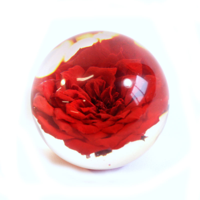 GLF6004<br/>Flower Globe Desk Decoration
