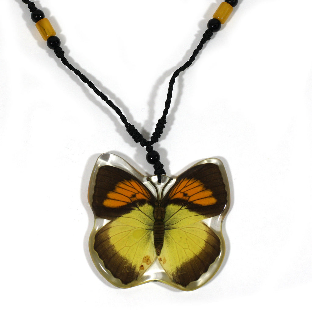 BTN107<br/>Yellow Orange Tip<br/>