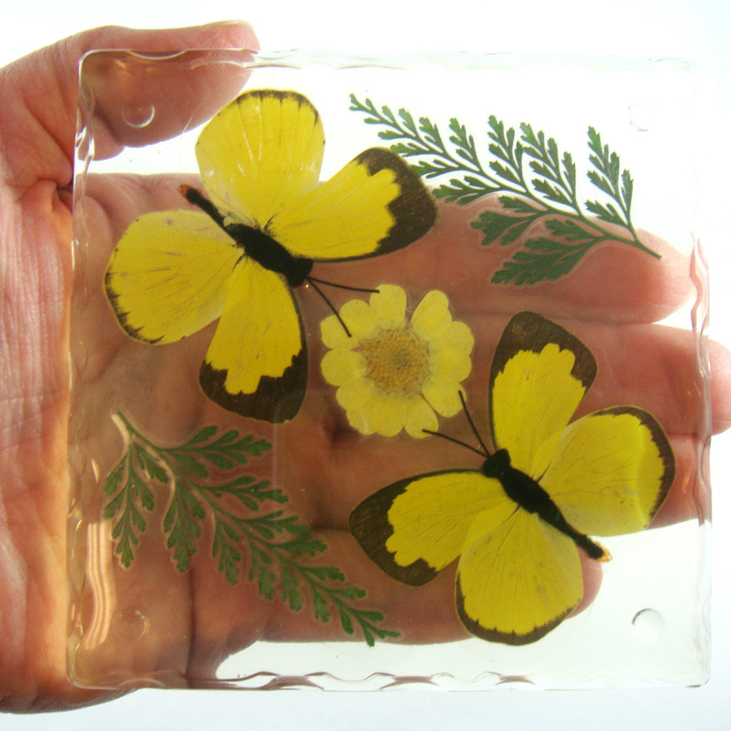 CT5023<br/>Two Grass Yellow Butterflies, Flowers & Leaves Coaster