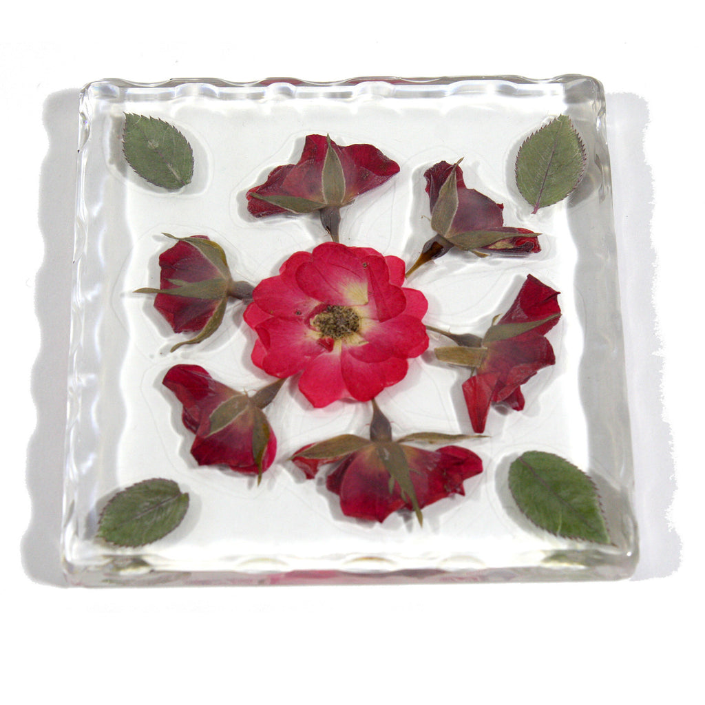 CT5034<br/>Roses Flower Coaster