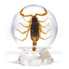 GL02<br />Golden Scorpion Globe Desk Decoration