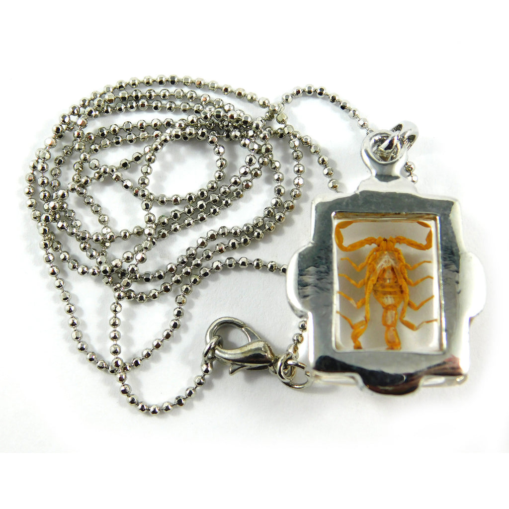 Small Golden Scorpion Square Necklace (JD206)