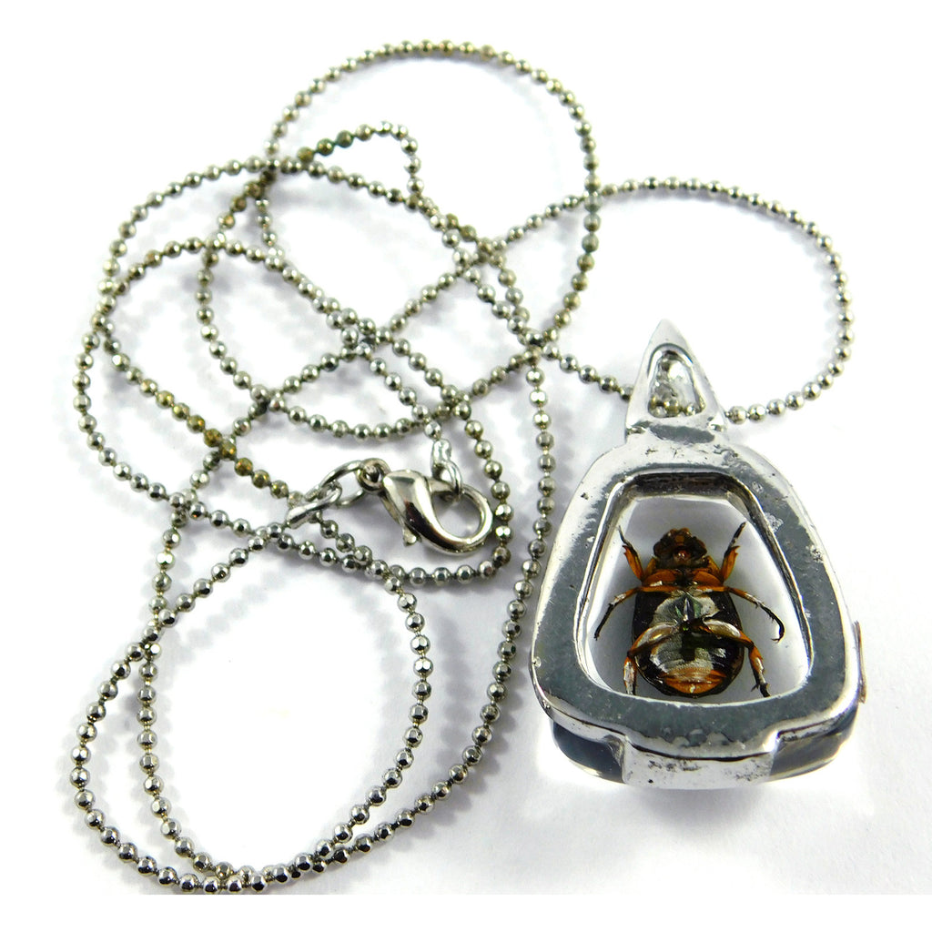 Chafer Beetle Triangular Necklace (JD401)