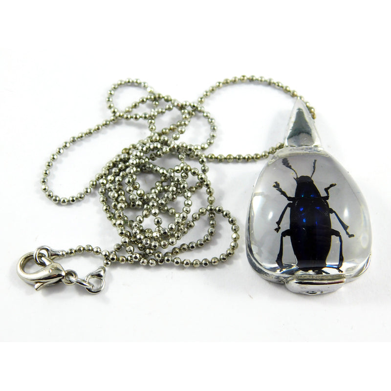 Blue Leaf Beetle Necklace (JD408)