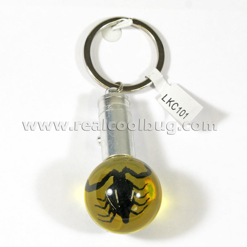LKC101<br/>LED Key Chain - Black Scorpion