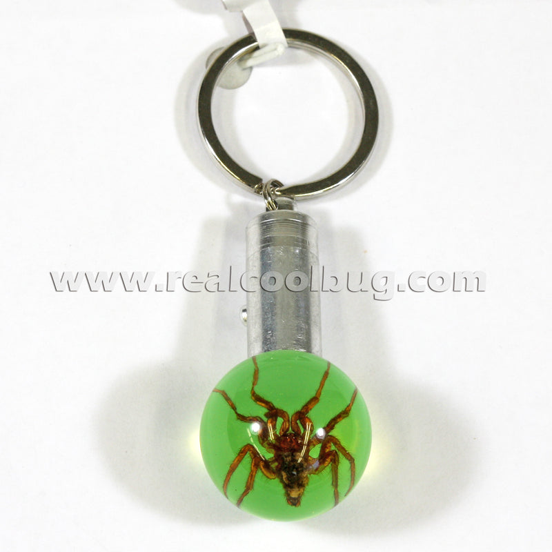 LKC103<br/>LED Key Chain - Spider