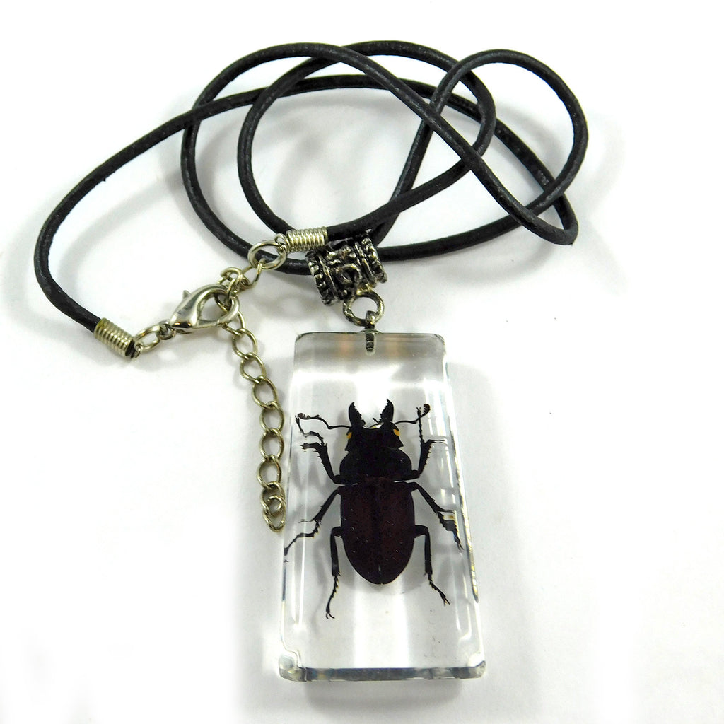 Stag Beetle Necklace (MSD103)