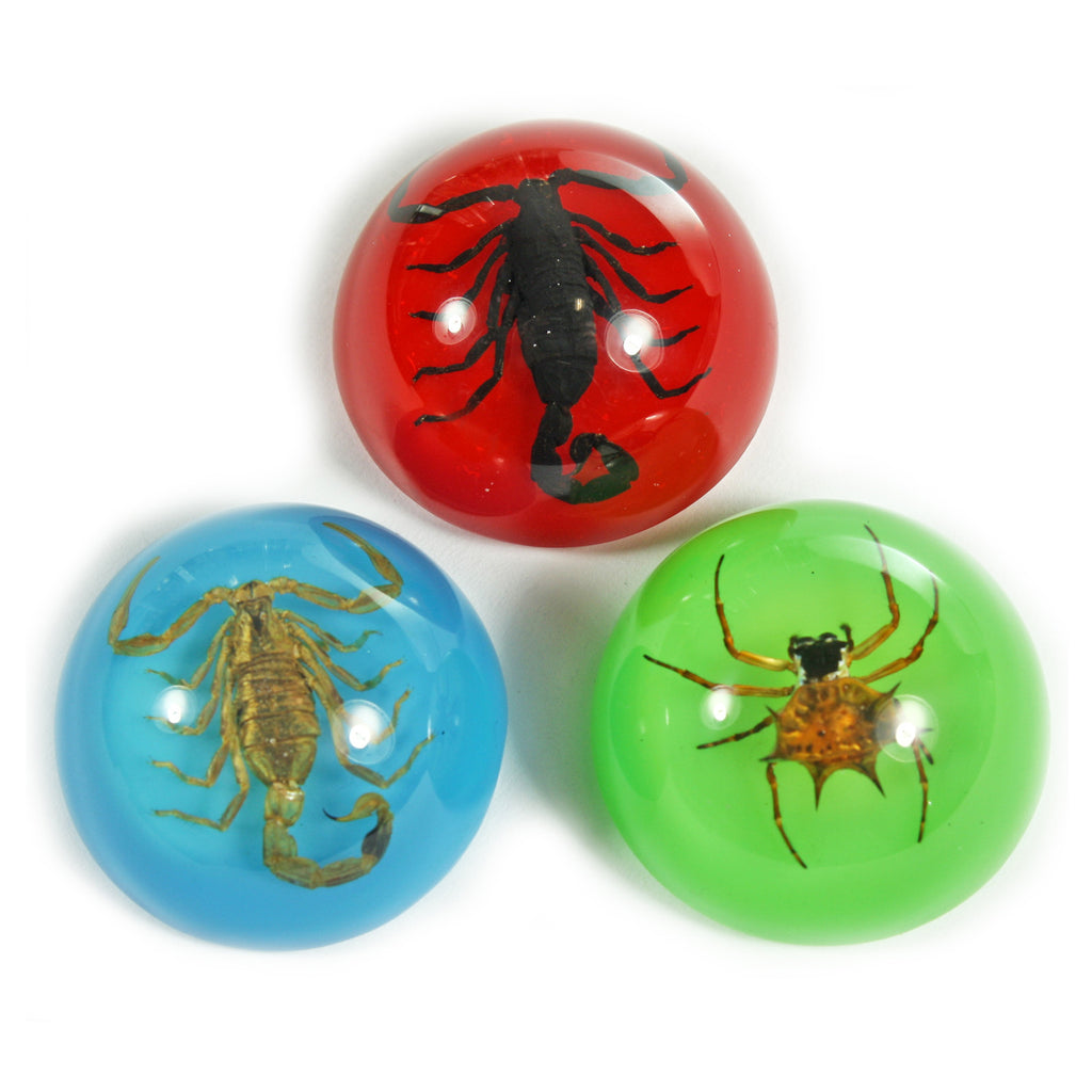 MT3001<br />Scorpion & Spider Set