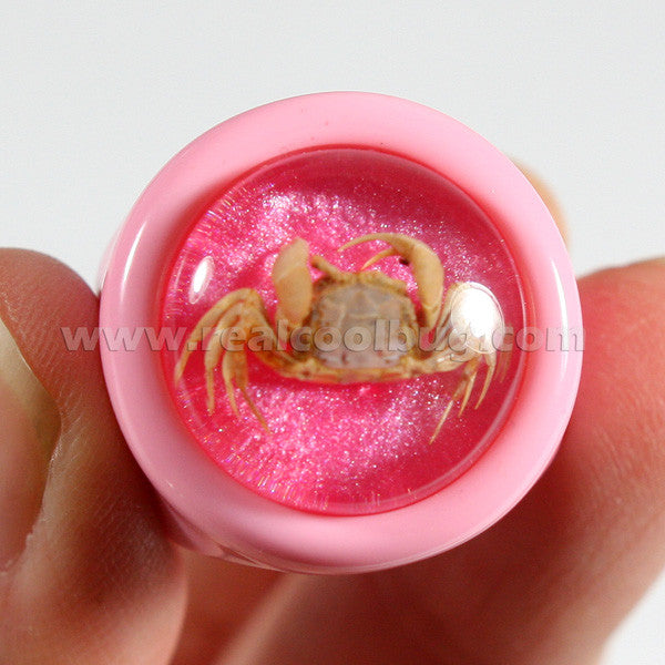 OR022<br/>Crab Ring