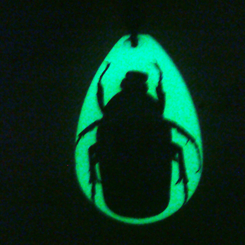 PYB1103<br />Green Chafer<br />Beetle