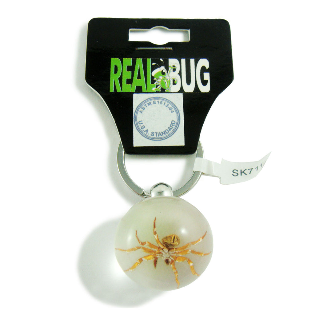 Real Spider Key Chain Round Ball (SK711)