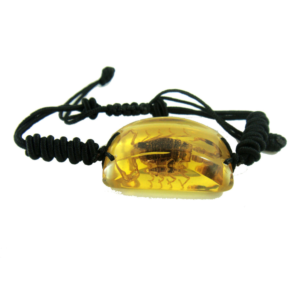 Golden Scorpion Bracelet Amber (SL151OLD)
