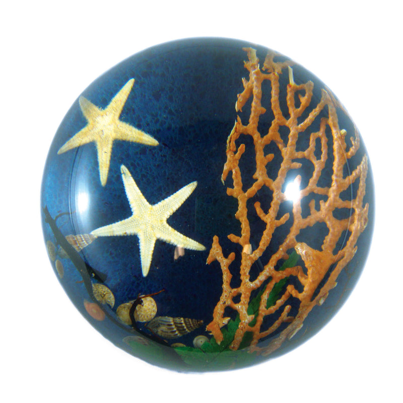 Starfish Dome Paperweight (SS231)