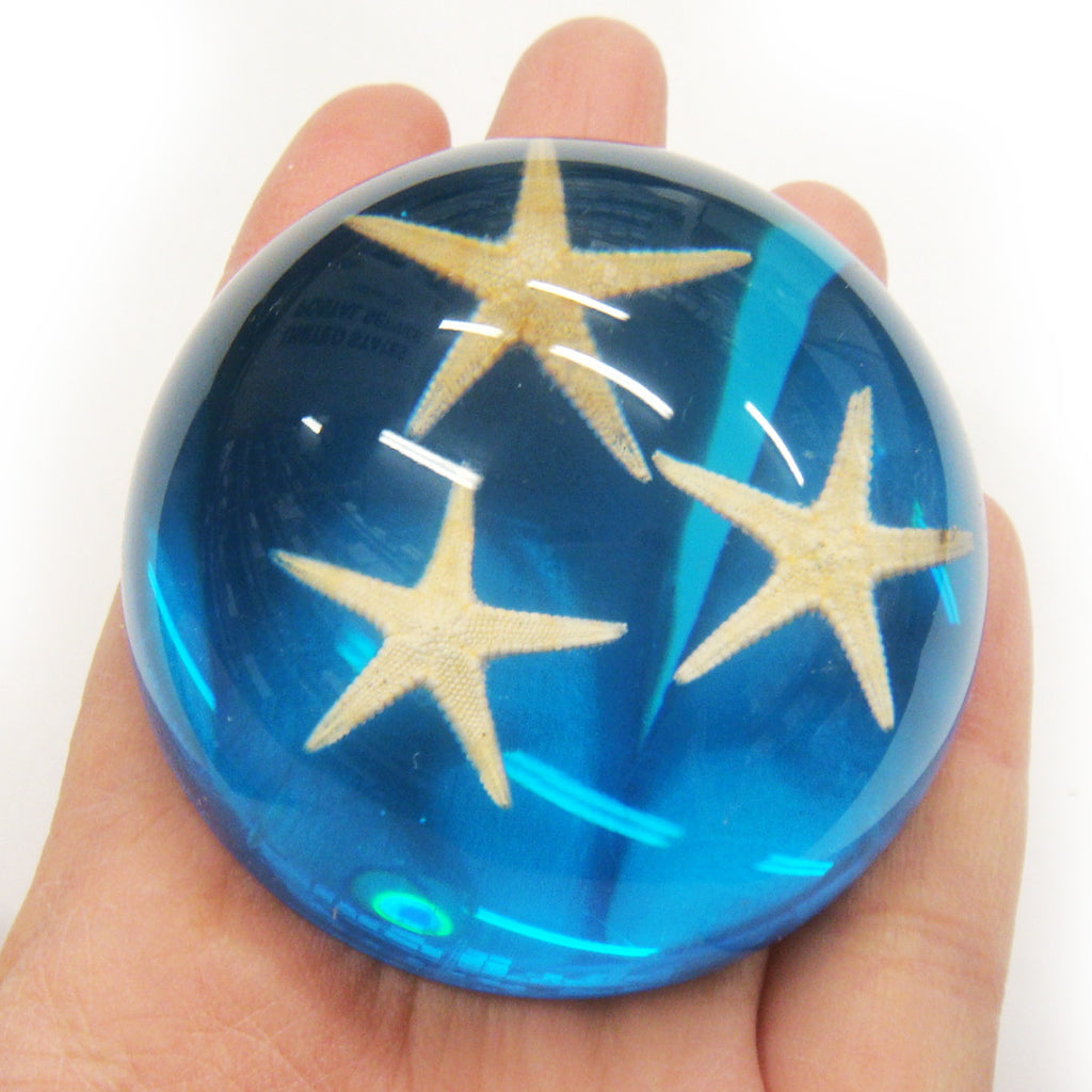 Starfish Dome Paperweight Blue (T1021)