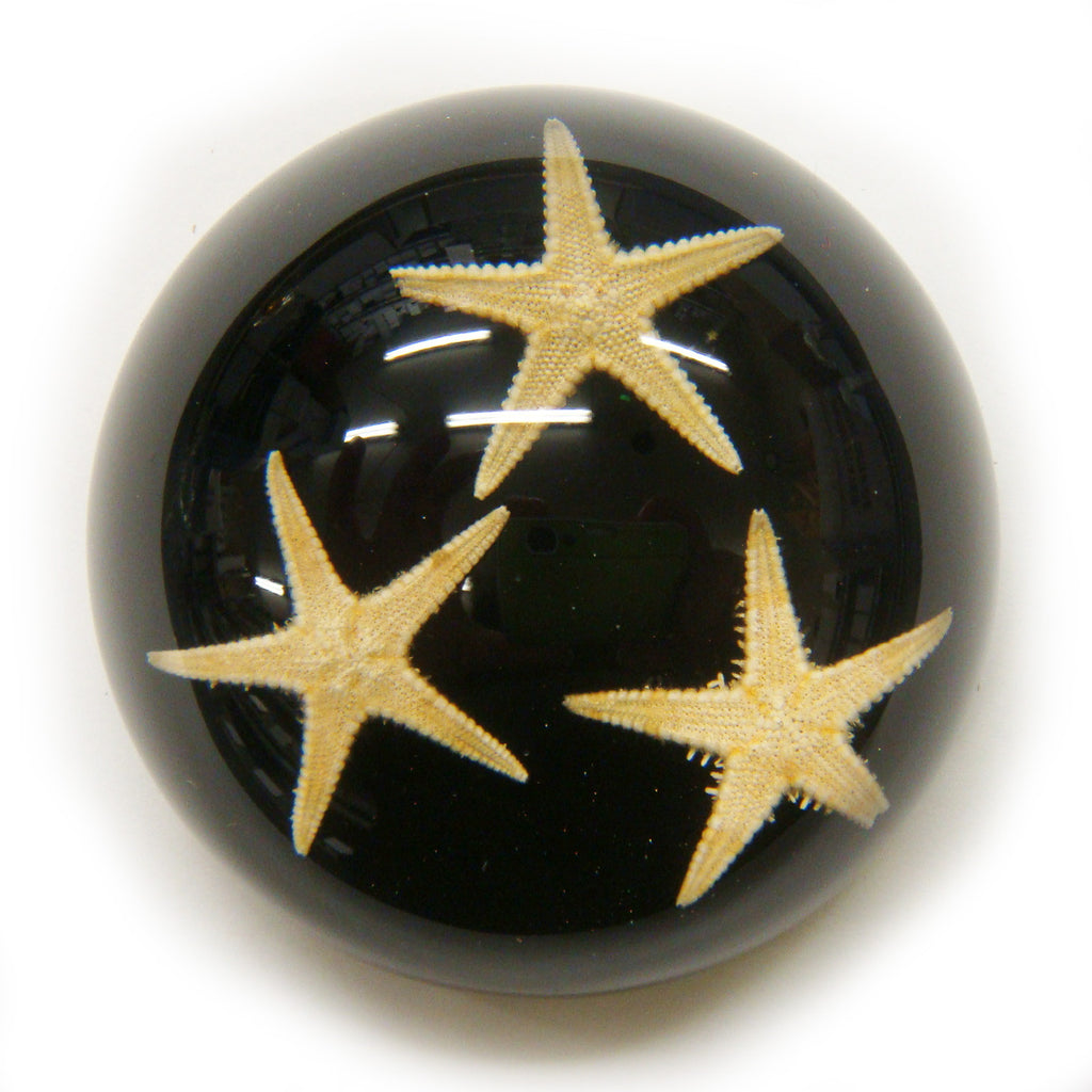 Starfish Dome Paperweight Black (T1022)