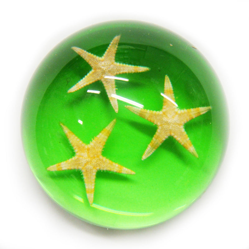 Starfish Dome Paperweight Green (T1023)