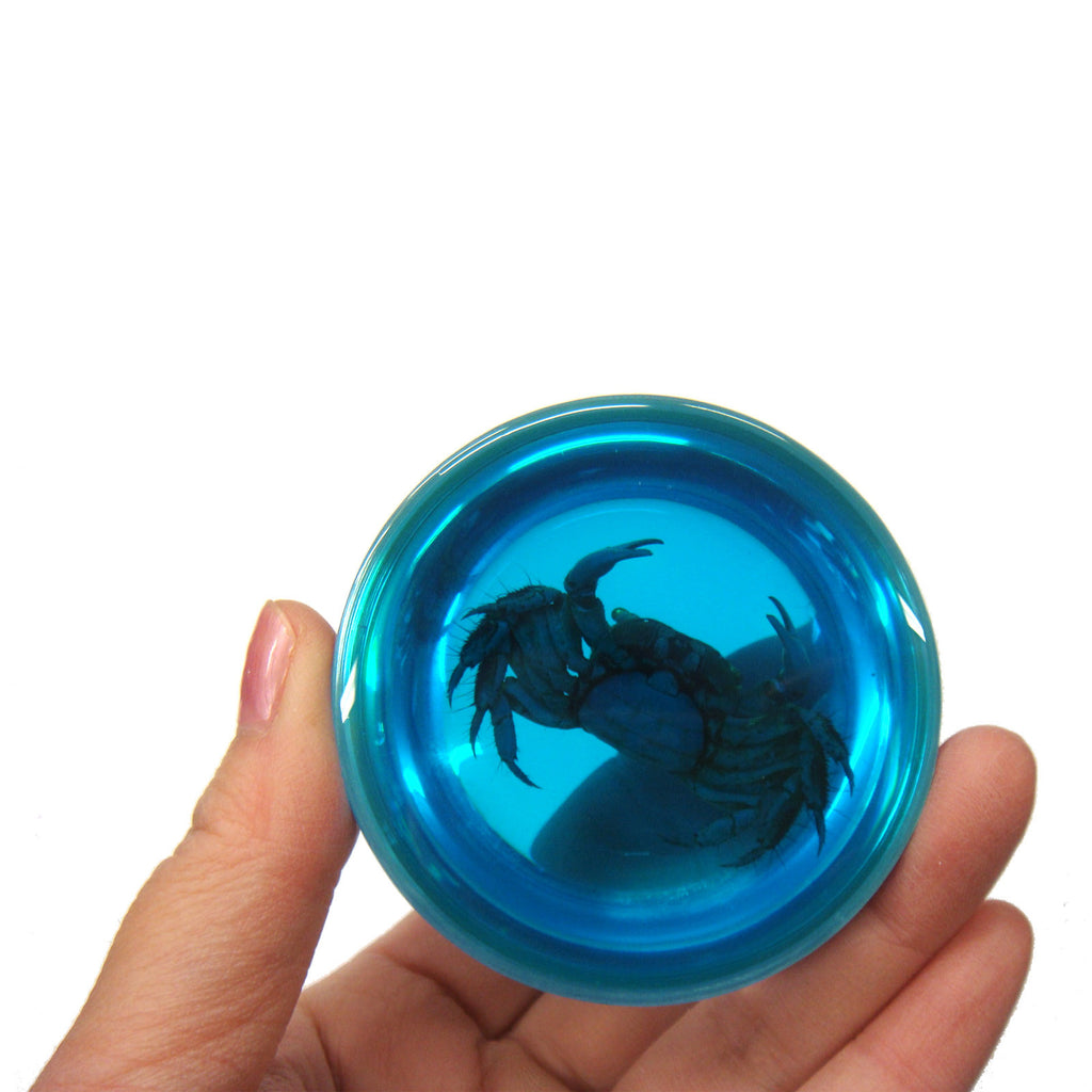 Crab Dome Paperweight Blue (T5021)