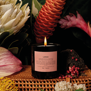 Lanai Scented Candle | scented candle with the tropical scents of coconut, pink peppercorn, orange blossom, coal and clove | Boy Smells | 5060541100077