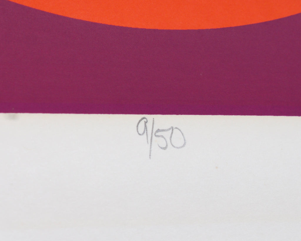 "Sue Christensen Signed Limited Edition Op Art ""Balloons from Above"" Serigraph"