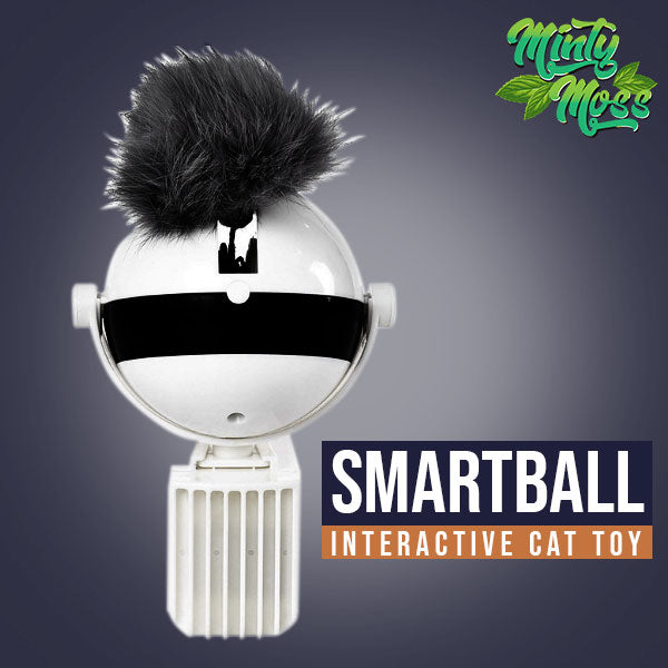 SmartBall Interactive Cat Toy