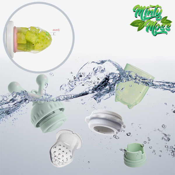 Silicone Fresh Fruit Baby Feeder Pacifier