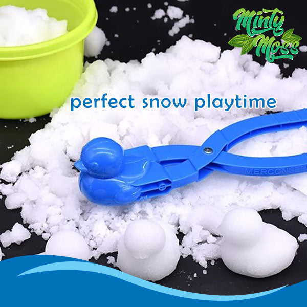 Fun Snow Molds