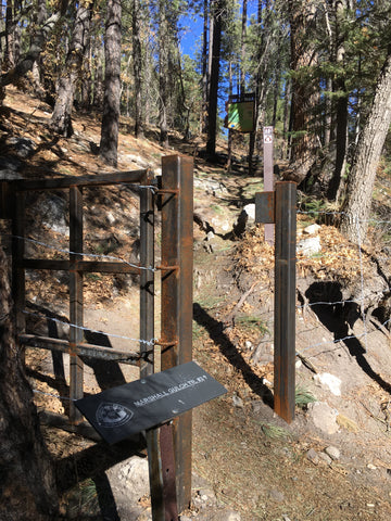 Marshall Gulch Trailhead on Mt Lemmon