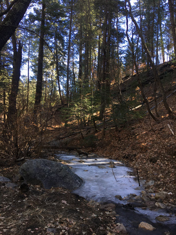 Ice covers a small portion of the creek running along the side of Marshall Gulch Trail