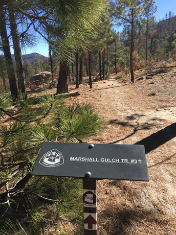 "Trail sign reading ""Arizona National Scenic Trail Marshall Gulch #3"""